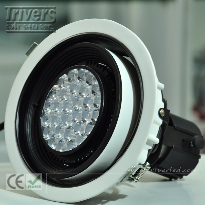 PAR 30 LED Ceiling light